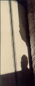 Borges sombra